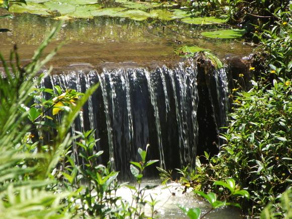 we leggen ook vijvers en watervallen aan