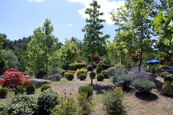 een goed aangelegde tuin wordt elk jaar mooier