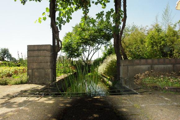 terras met vijver